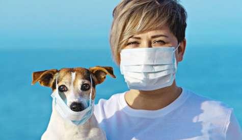 Intrebari si raspunsuri legate de ingrijirea animalelor de companie in timpul auto-izolarii