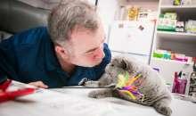 Medicul veterinar Tache Epure, un profesionist dedicat sanatatii si ingrijirii pisicilor